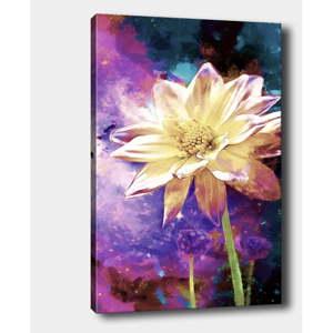 Nástěnný obraz na plátně Tablo Center Bloom, 40 x 60 cm