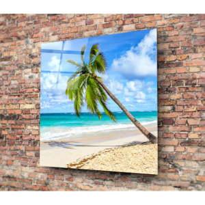 Skleněný obraz 3D Art Palm Tree, 40x40cm