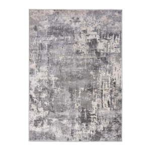 Světle šedý koberec Flair Rugs Wonderlust, 120 x 170 cm