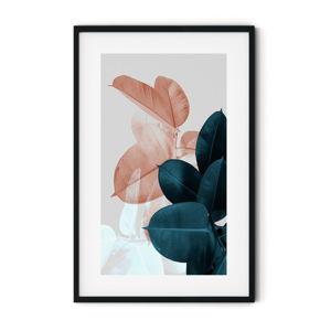 Plakát v rámu Insigne Ficus,46x72cm
