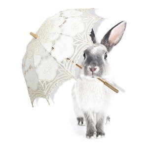 Nástěnná samolepka Dekornik Harry Is Singing In The Rain, 43x55cm