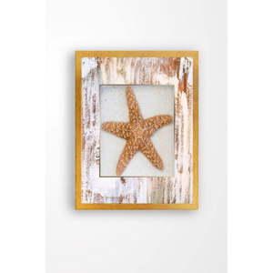 Nástěnný obraz na plátně Tablo Center Starfish, 29 x 24 cm
